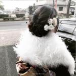 seijin_4.png